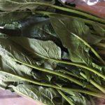 ほうれん草の保存方法 ☆コストコ食材・アレンジレシピ